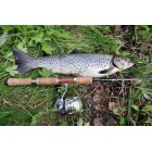 CANNE TRUITE SMITH TROUT IN INTER BORON XX 88MSD