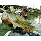 SPINNERBAIT O.S.P HIGH PITCHER MAX - 21G