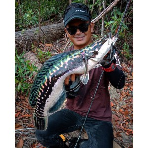 https://www.exotic-anglers.fr/3498-11440-thickbox/extreme-tuned-gt-zero-.jpg